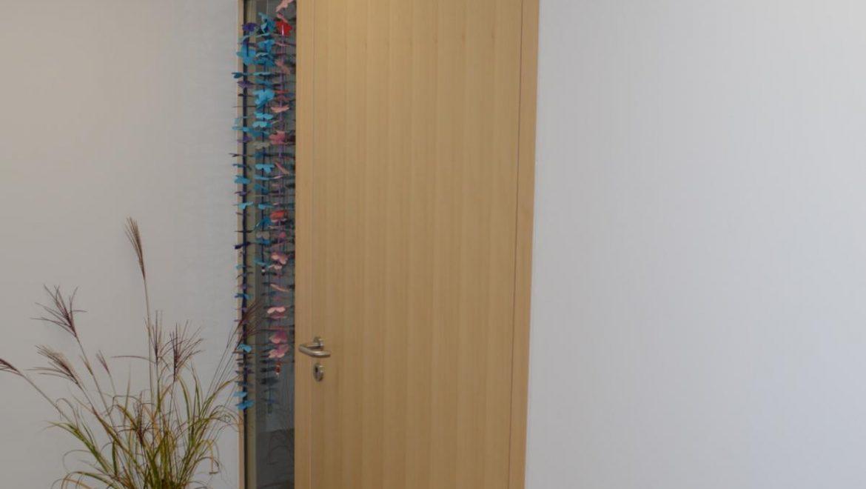 Eingangsbereich; Einflügelige Tuer mit seitlicher Verglasung